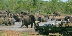 2 DAYS CHOBE HOLIDAY PACKAGE
